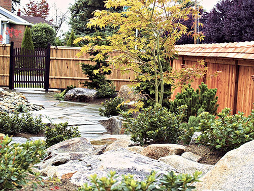 japanese garden gallery   courtyard garden design, Natural flower