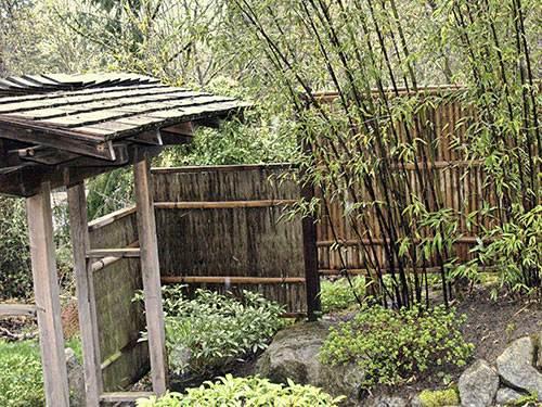 Japanese Garden Wooden Gate
