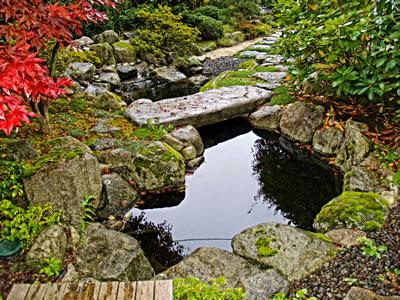 Japanese garden gallery 3 water garden koi pond for Koi and water garden