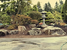 Making of a Japanese Garden - Before & After